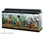 All Glass Aquarium AAG21248 48 in. Fluorescent Deluxe Black Hood Reviews