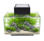 Fluval Edge, 6 gallon Aquarium with 21-LED Light, Black