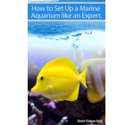 How to Set Up A Marine Aquarium Like an Expert. (Aquarium and Turtle Mastery)
