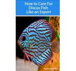 How to Care for Discus Fish Like an Expert (Aquarium and Turtle Mastery Book 3) Reviews