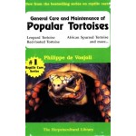 General Care and Maintenance of Popular Tortises
