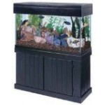 AQUEON All Glass Aquarium AAG51148 Pine Cabinet, 48x18-Inch