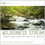 Wilderness Stream: Peaceful Water Sounds with Deep Forest Ambiance (Nature Sounds, Deep Sleep Music, Meditation, Relaxation Rivers & Babbling Brooks)