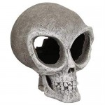 Exotic Environments Alien Skull, Small, 4-1/2-Inch by 5-1/2-Inch by 5-1/2-Inch
