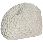 Deep Blue Professional ADB80031 Brain Coral for Aquarium, 3 by 2.5 by 2-Inch