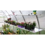 Exaco - RIGA II s Top Shelf - 54 Square Foot Greenhouse Single Top Shelf