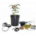 Bubbler Bucket Self-Watering Plant Growing Hydroponic 5-gal DWC H2OtoGro