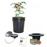 Hydroponic system Complete DWC BUBBLER Bucket Kit 5-gal