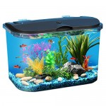 Aquarius Aq15005 Aquarius 5 Rounded 5-Gallon Aquarium Kit