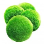 4 LUFFY Giant Marimo Moss Balls - Aesthetically Beautiful & Create Healthy Environment - Eco-Friendly, Low Maintenance & Curbs Algae Growth - Shrim...