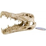 Pen-Plax RR1065 Crocodile Skull Animal Resin Ornament for Fish Tanks